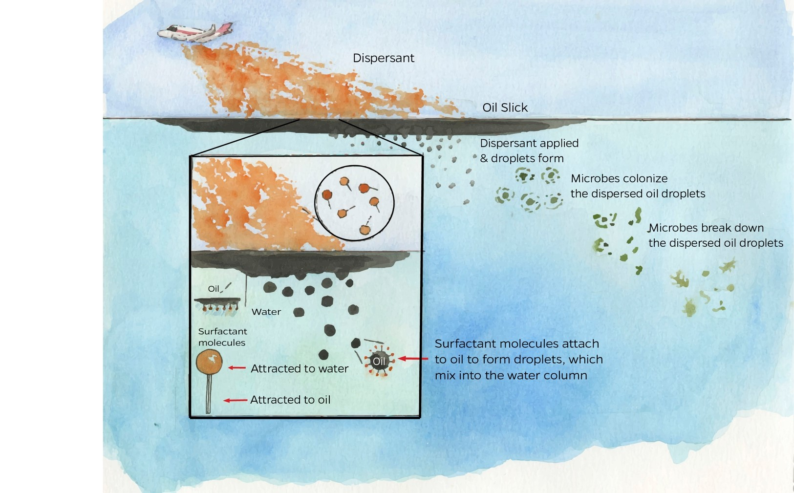 Updated dispersants graphic